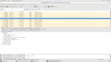 OSPF Listing
